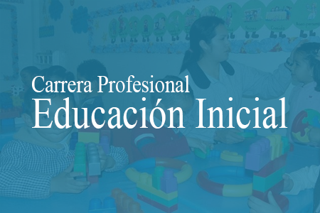 Gestión y organización de II.EE. y Programas de Educación Inicial I